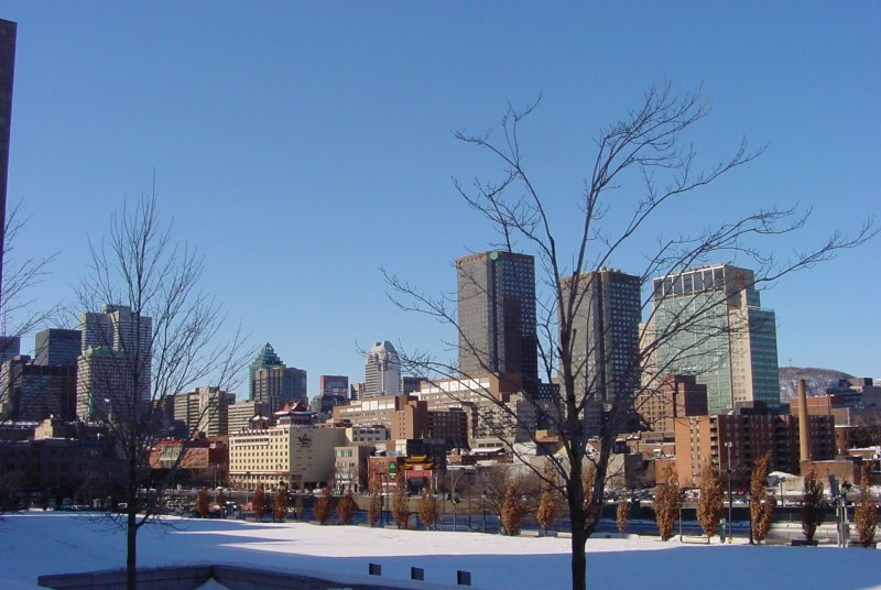 423-montreal