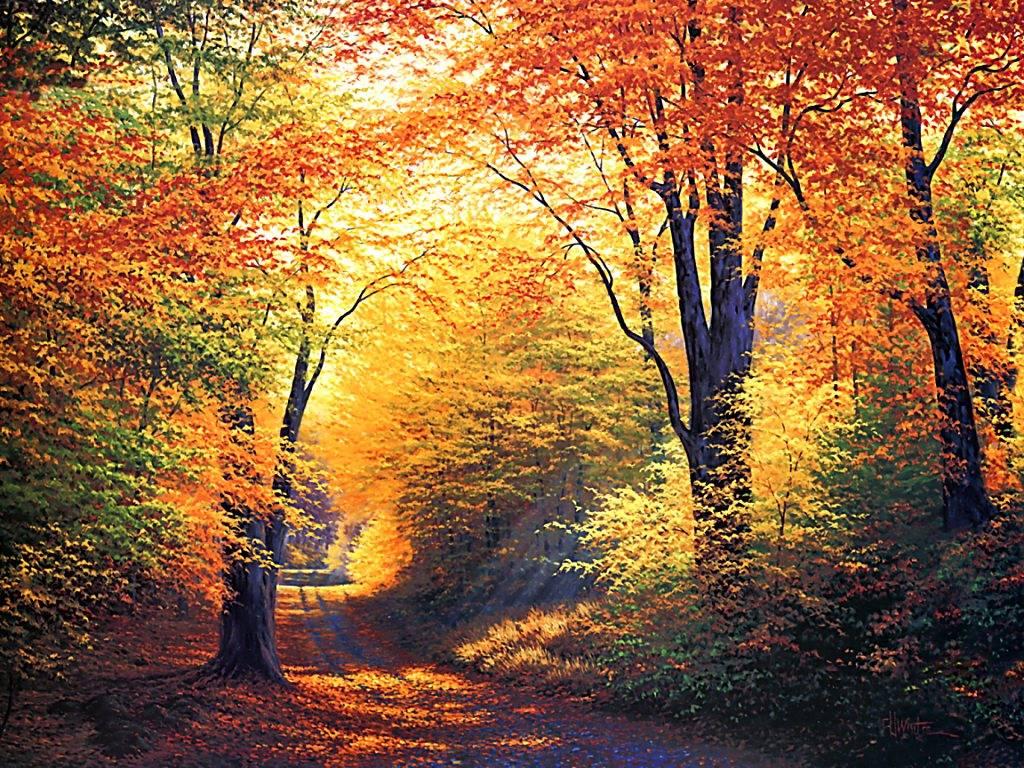 BEAUTE DE LA NATURE  automne-21