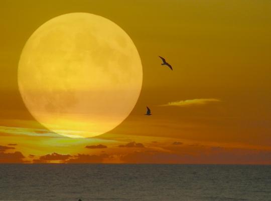 MON HUMEUR DU SOIR dans CITATIONS lune