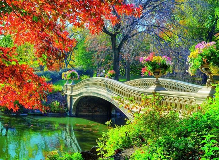 pont tres fleuri