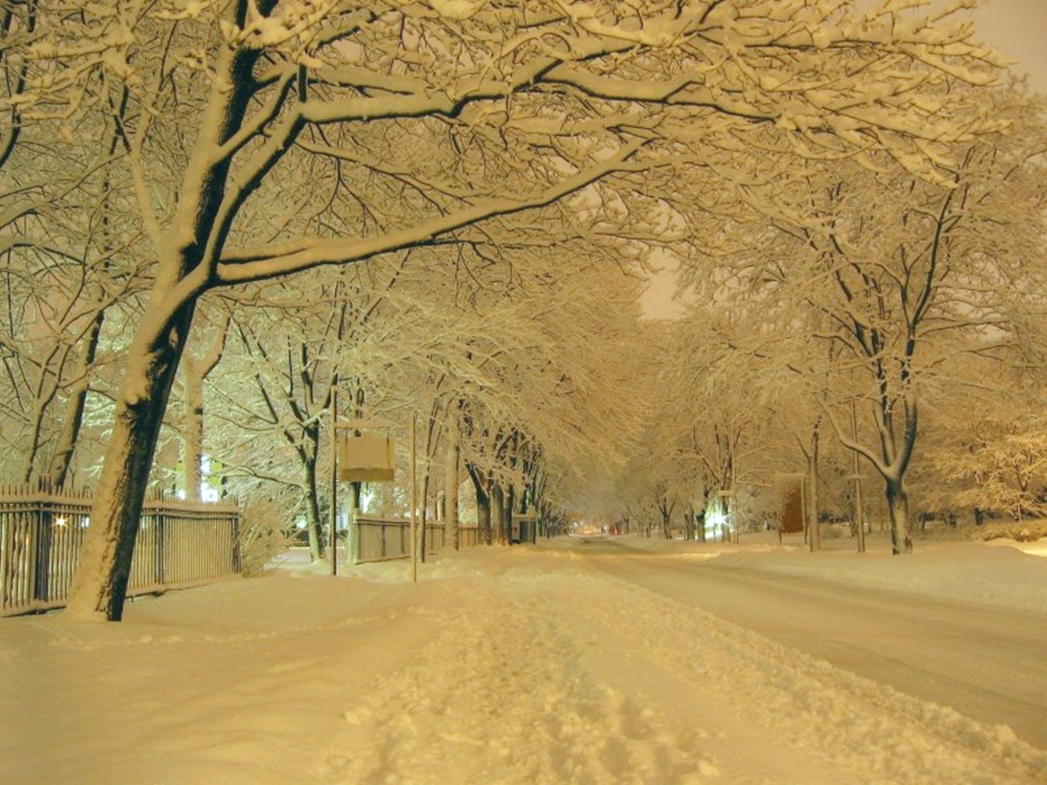 neige-au-canada_74747