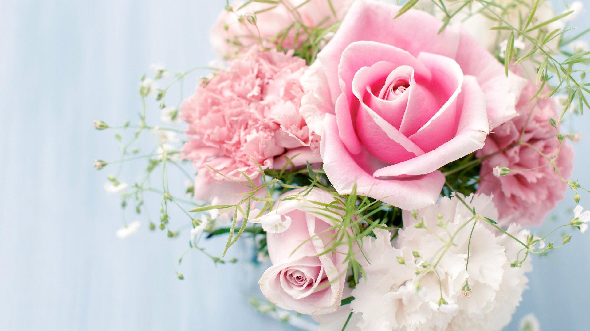 fonds-ecran-Rose-fleur-9